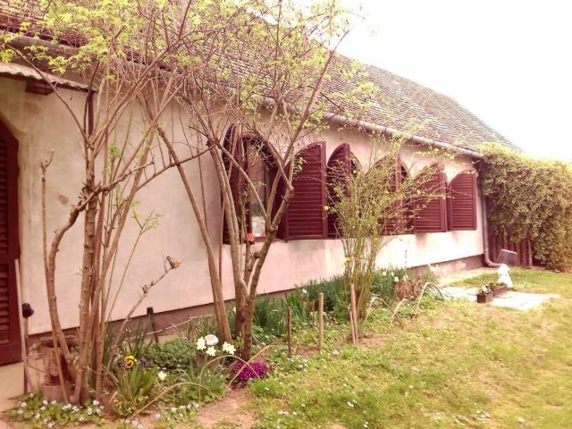 Eladó családi ház, Dunafalván 13.5 M Ft, 3 szobás