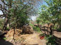Eladó Családi ház Kisoroszi