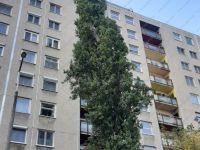 Eladó panellakás, XIII. kerületben, Petneházy utcában 34.9 M Ft