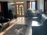 Eladó családi ház, Ürömön 169 M Ft, 9 szobás
