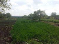 Eladó Mezőgazdasági Hajdúszoboszló