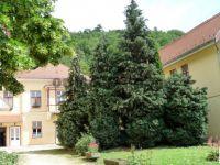 Eladó üzlethelyiség, Visegrádon 250 M Ft / költözzbe.hu