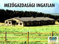 Eladó Mezőgazdasági Győr