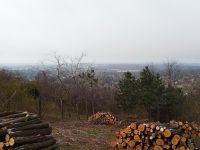 Eladó telek, Gödöllőn 16 M Ft / költözzbe.hu